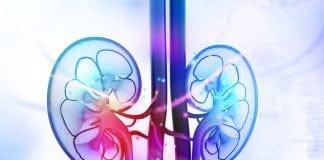 โรคเบาหวานลงไตคืออะไร (Diabetic Kidney Disease, DKD)