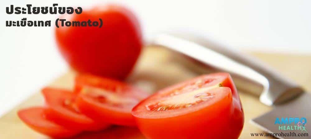 สรรพคุณและประโยชน์ของมะเขือเทศ (Tomato)