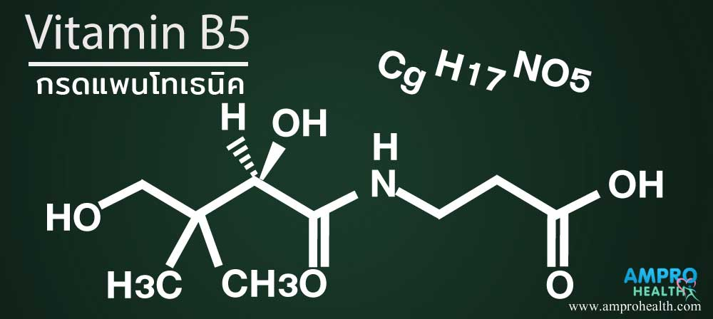 กรดแพนโทเธนิคหรือวิตามินบี 5 คืออะไร (Pantothenic Acid หรือ Vitamin B5)