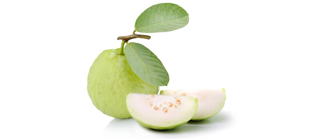 ฝรั่ง (Guava)