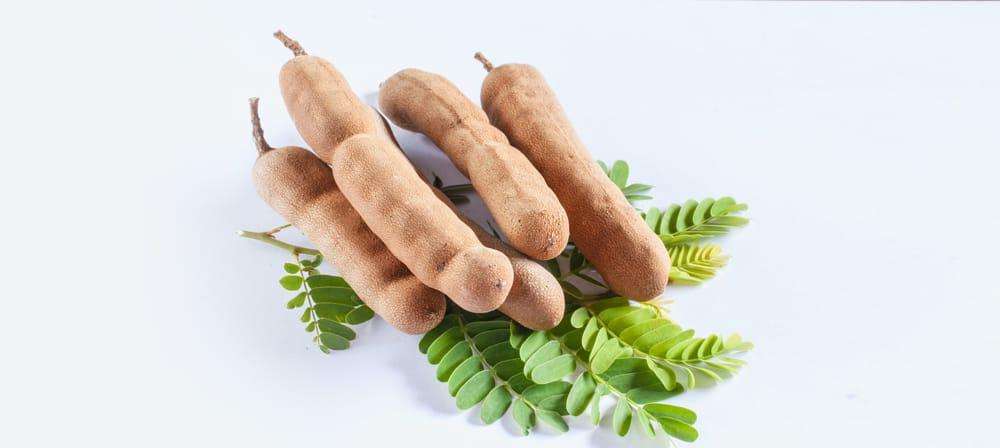 สรรพคุณและประโยชน์ของมะขาม (Tamarind)