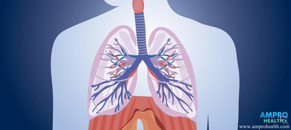 มะเร็งปอด (Lung Cancer) สาเหตุ อาการ และวิธีรักษา