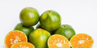 คุณค่าสารอาหารและประโยชน์ของส้ม (Orange)
