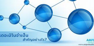 กรดอะมิโนสำคัญอย่างไร (Amino Acids)