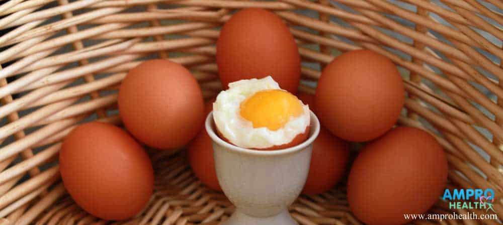 การกินไข่ทำให้คอเลสเตอรอลสูงใช่หรือไม่