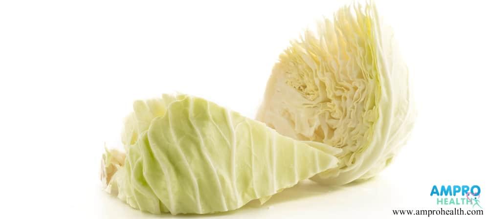 กะหล่ำปลี (Cabbage)