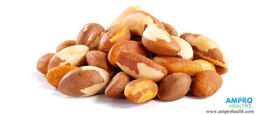 ถั่วบราซิล (Pinto Peanut)