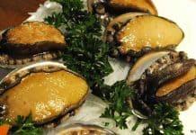 หอยเป๋าฮื้อ แอบบะโลน (Abalone)