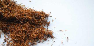 สูบบุหรี่และยาสูบ 22% ตายด้วยมะเร็ง