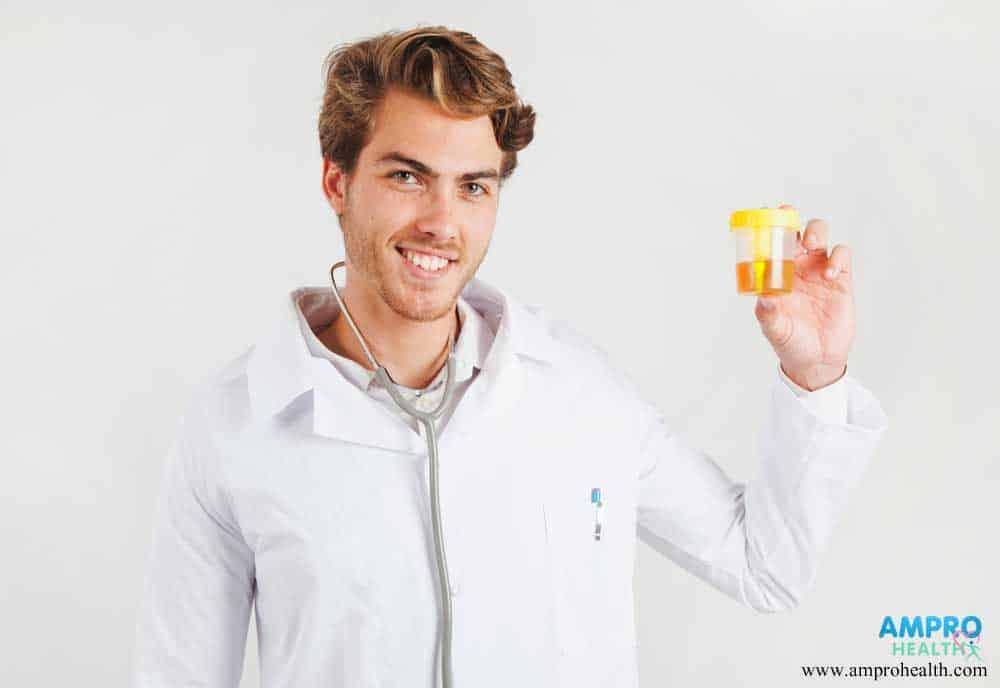 การตรวจปัสสาวะหาค่า Urine Creatinine