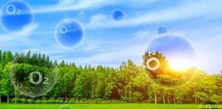 ออกซิเจน (Oxygen) จำเป็นต่อร่างกายอย่างไร?