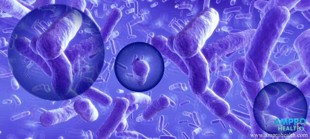 ประโยชน์ของโปรไบโอติก (Probiotics)