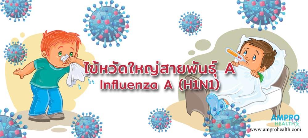 ไข้หวัดใหญ่ สายพันธุ์ A ( Influenza A หรือ H1N1 )