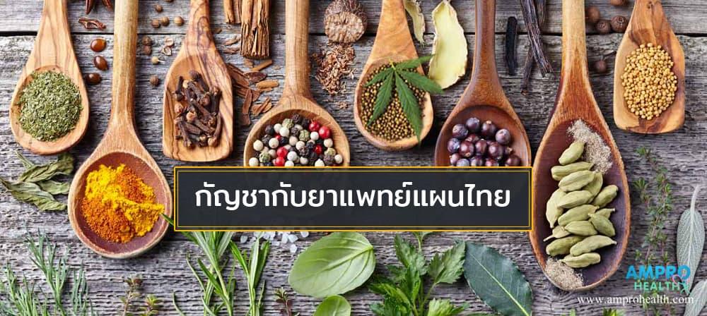 กัญชากับยาแพทย์แผนไทย
