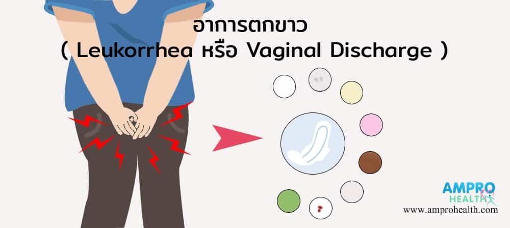 ตกขาว ( Leukorrhea หรือ Vaginal Discharge )