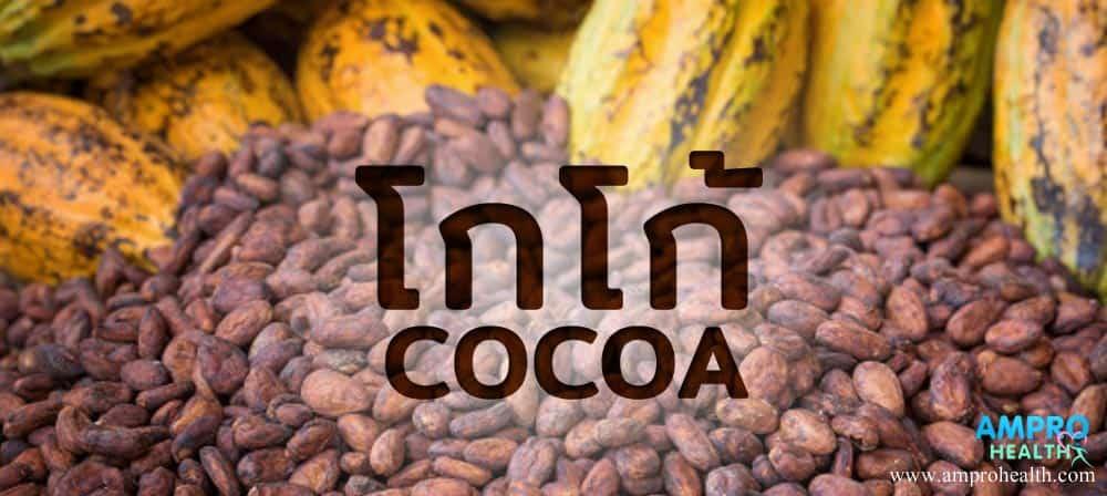 โกโก้ ( Cocoa ) เมล็ดจากต้นคาเคา ( Cacao )